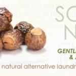 Soap Nuts & Stain Stick Review – Demetria Organics