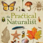The Practical Naturalist — For More Informed Summer Adventures
