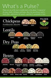 Take the Pulse Pledge to Add more Pulses in to your Diet this Year #PulsePledge