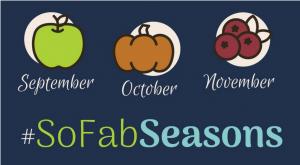 50+ Ideas for using Apples this Season