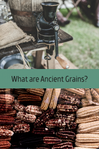 What are Ancient Grains?