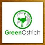 Green Ostrich Wind 'N Go Flashlight Review