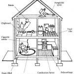 Designing a Non-Toxic Home Environment