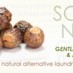 Soap Nuts & Stain Stick Review – Demetria Organics