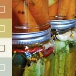 Pickle Palette Paint Colours from Yolo Eco-Friendly Paint