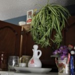 Clutter Above Kitchen Cupboards —Renovation Redecoration Project