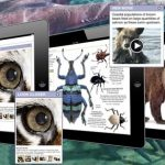 DK Canada Illustrated eBooks for iPad Feature