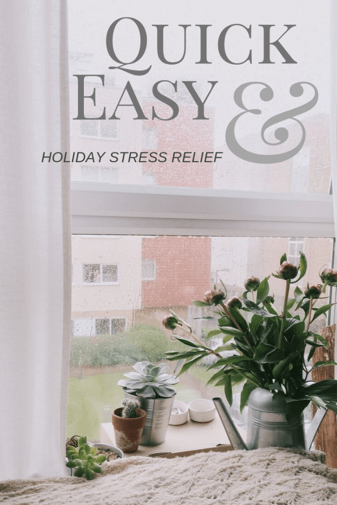 You may be seeking out some holiday stress relief this time of year. Here are 6 easy and quick things you can do to reduce stress and anxiety.