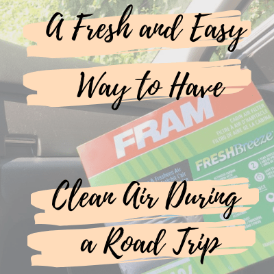 A Fresh and Easy Way to Have Clean Air During a Road Trip