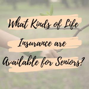 kinds of life insurance